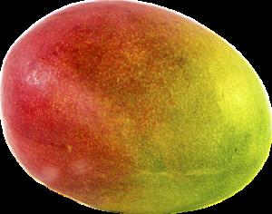La mangue fruits et légumes du mois d'Octobre