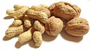 Fruits et légumes du mois de Septembre les noix et noisettes