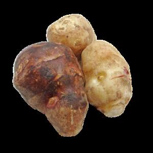 topinambours fruits et légumes du mois d'Octobre
